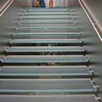 steps:free