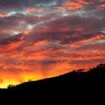 sunset:free